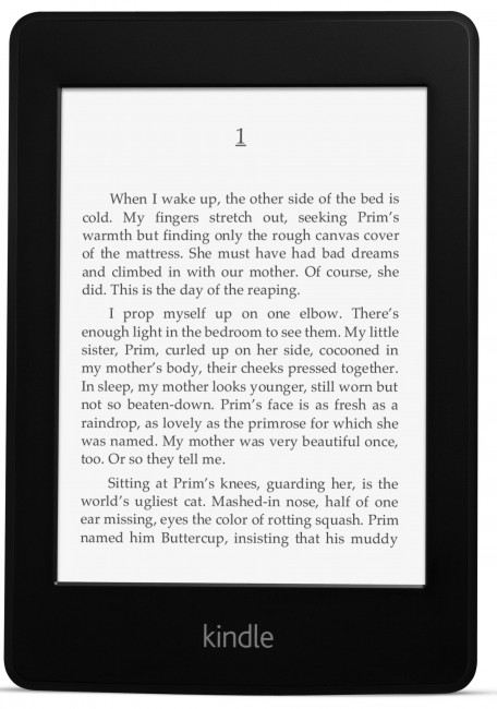 Kindle Paperwhite Display