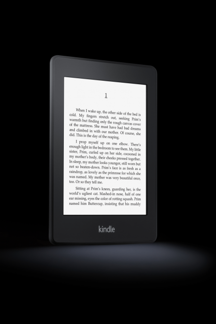 Kindle Paperwhite - Amazon's ereader with built in light